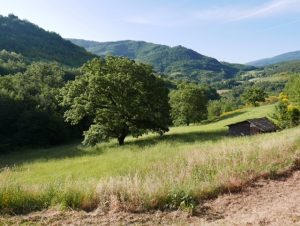 Umbrian Countryside in Italy
